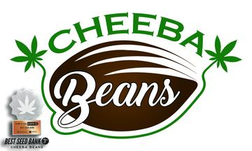 Cheeba Beans