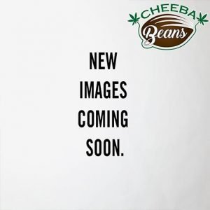 Images_coming_soon_watermarked_placeholder_e9454b49-709b-449c-829a-be4518721956