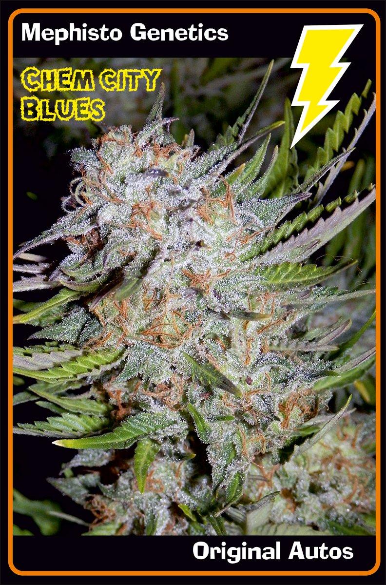 main-strain-chem-city-blues