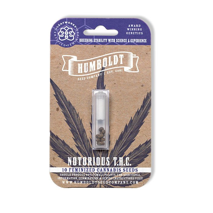 Notorious-THC-cannabis-seeds-humboldt-seed-company-cheeba-beans-pack