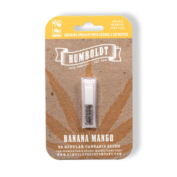 banana-mango-cannabis-seeds-humboldt-seed-company-cheeb-beans-pack