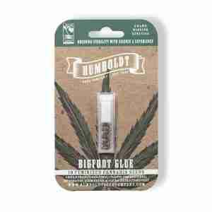 bigfoot-glue-cannabis-seeds-humboldt-seed-company-pack