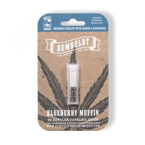 blueberry-muffin-cannabis-seeds-humboldt-seed-company-cheeb-beans-pack