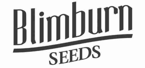 about-blimburn-seeds