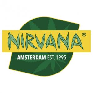 nirvana_300