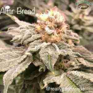 altar-bread