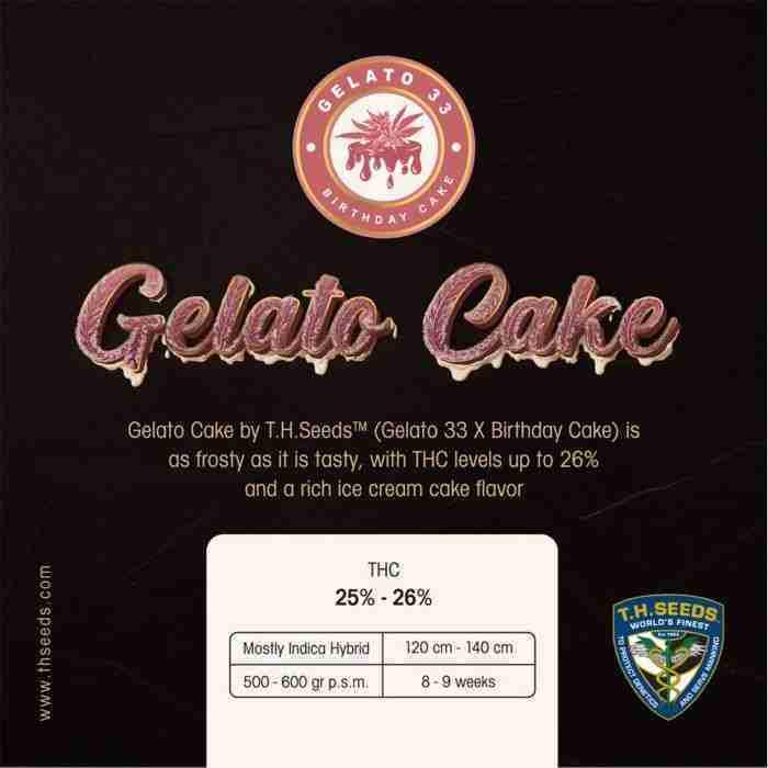 gelato-cake-cannabis-seeds