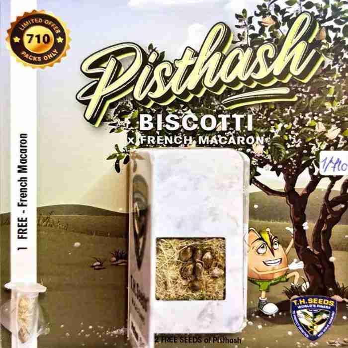 pisthash-cannabis-seeds-2