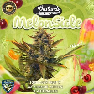 t.h.seeds-melonsicle-promo-image-final