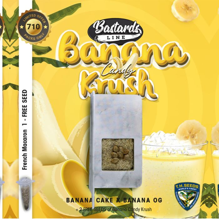 t.h.seeds-banana-candy-krush-card-seed-pack_1