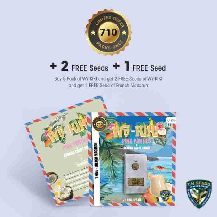 t.h.seeds_wy-kiki-promo-card